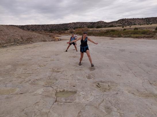 Following the footsteps of giants (AKA brontosauruses)!