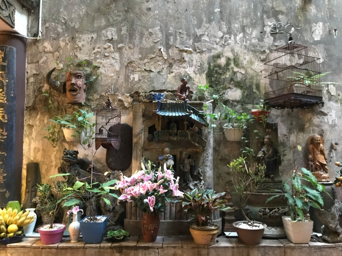 Old Vietnamese homes are long and narrow and often include picturesque courtyards midway through.