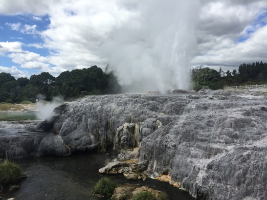 Full eruption of Pohutu.